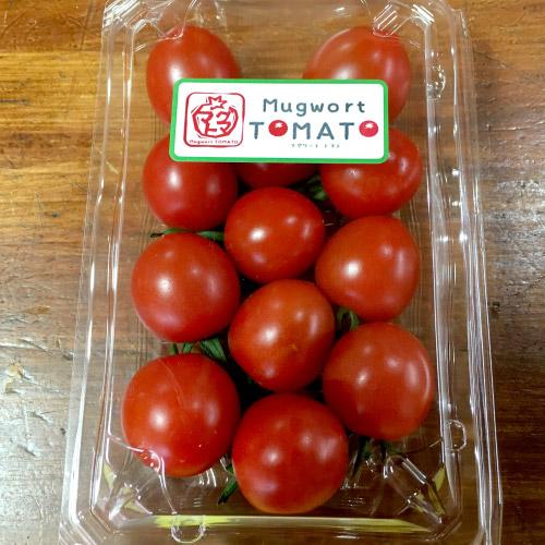 マグワートトマト取り扱いとまと「あかねスイーツ」