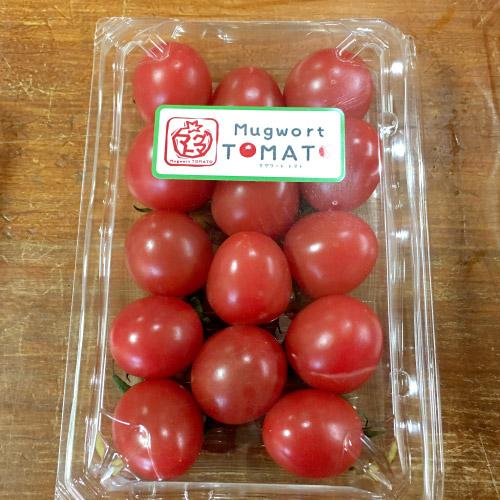 マグワートトマト取り扱いとまと「ももちゃん」