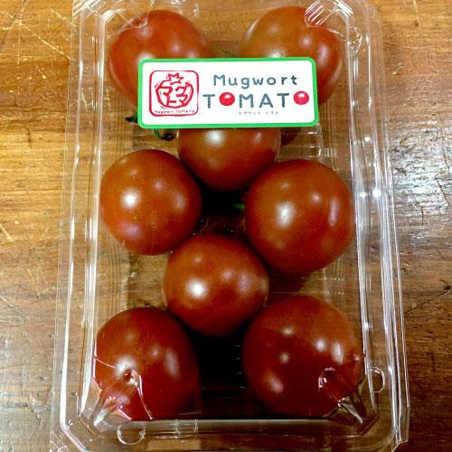 マグワートトマト取り扱いとまと「チョコちゃん」