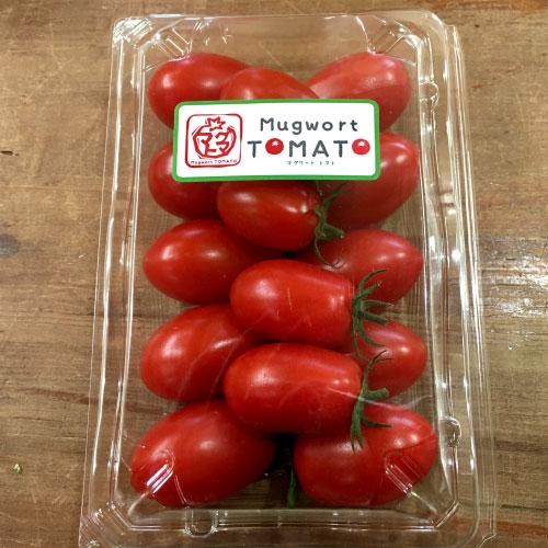 マグワートトマト取り扱いとまと「アイコ」