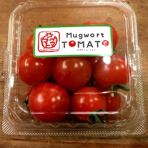 マグワートトマト取り扱いとまと「キャロル10」